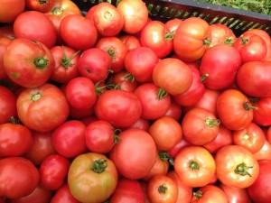Bartlett Farm has heirloom tomatoes galore!!